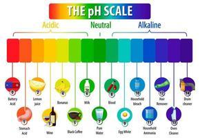 le diagramme d'échelle de pH sur fond blanc