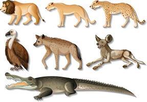 ensemble d'animaux sauvages africains isolés sur fond blanc