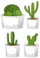 ensemble de différents cactus en pot sur fond blanc vecteur