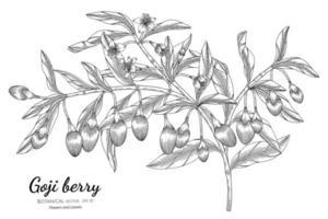art de ligne de branches de baies de goji dessinés à la main vecteur