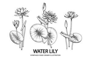 croquis ensemble décoratif floral. dessins de fleurs de nénuphar. dessin au trait noir isolé sur fond blanc. illustrations botaniques dessinées à la main. vecteur d'éléments.