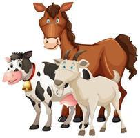 Groupe d'animaux de ferme cheval, vache et mouton isolé sur fond blanc
