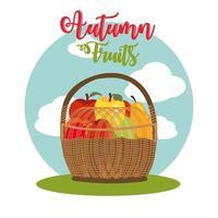 fruits d'automne dans un panier en osier vecteur