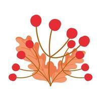 automne baies feuilles feuillage design isolé fond blanc