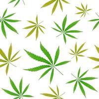 modèle sans couture de feuille de cannabis vert