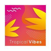 bannière colorée vibes tropicales avec plante à feuilles vecteur