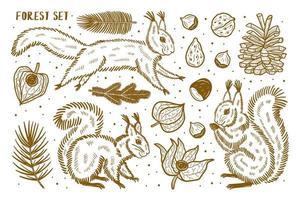 ensemble d'éléments forestiers, clipart. animaux, nature, plantes. vecteur