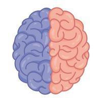 cerveau humain, symbole de soins de santé mentale