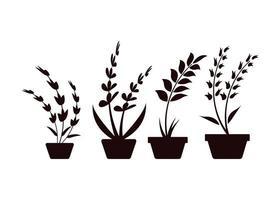 plante pot icône design modèle vector illustration isolé