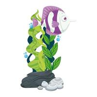 vie sous-marine de mer, poisson mignon avec des algues sur fond blanc