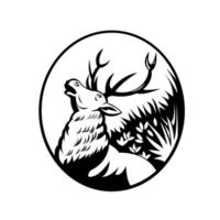 Red Deer stag rugissant dans la vue de côté de la forêt rétro ovale en noir et blanc vecteur