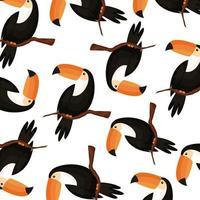 fond de toucans animaux exotiques