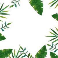 Cadre d'icône isolé de feuilles naturelles tropicales