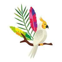 oiseau perroquet en icône isolé de branche d'arbre vecteur