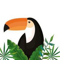 toucan avec icône isolé de feuilles tropicales