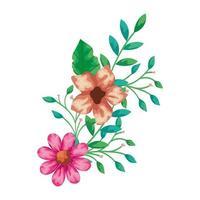 jolies fleurs avec des branches et des feuilles vecteur