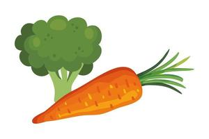 carotte fraîche aux légumes brocolis