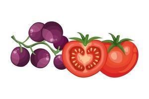 tomates fraîches avec des icônes isolées de raisins