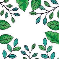 cadre de branches avec feuilles naturelles