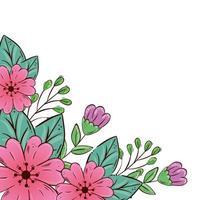 jolies fleurs roses et violettes avec des feuilles