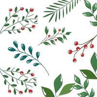 motif de branches avec des feuilles et des graines