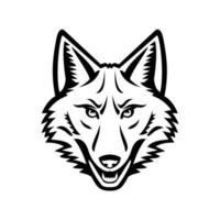 Tête de mascotte vue de face de coyote noir et blanc vecteur