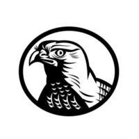 Tête d'un autour des palombes un rapace diurne moyen-grand rétro gravure sur bois ovale noir et blanc vecteur