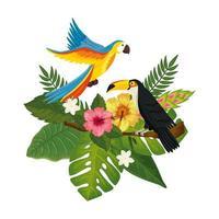 perroquet avec toucan et feuilles nature vecteur