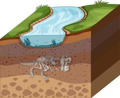 couches de sol avec des fossiles de dinosaures vecteur