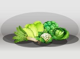 ensemble de légumes verts vecteur