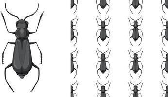 insecte coléoptère et fond transparent vecteur