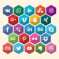 Icône de réseau social hexagonal vecteur
