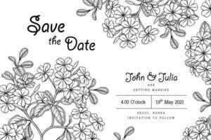 Plumbago auriculata ou cape leadwort fleur illustrations dessinées à la main. carte d'invitation vecteur