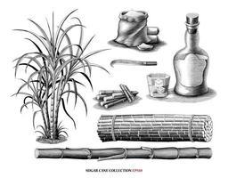 Arbre de canne à sucre avec collection de produits illustration vintage style gravure art noir et blanc isolé sur fond blanc vecteur