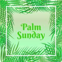 Carte de vacances Palm dimanche avec fond de feuilles de palmiers vecteur