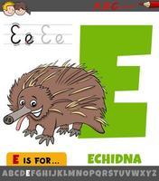 lettre e de l'alphabet avec animal échidné de dessin animé vecteur
