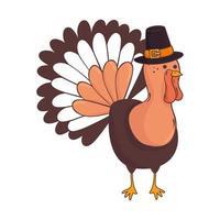 animal de dinde de Thanksgiving avec personnage de chapeau de pèlerin vecteur