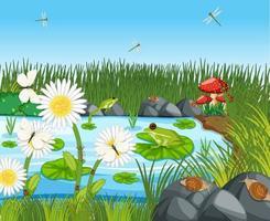 beaucoup de grenouilles vertes et de libellule dans la scène de l & # 39; étang vecteur