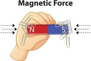force magnétique avec de nombreux trombones sur fond blanc vecteur