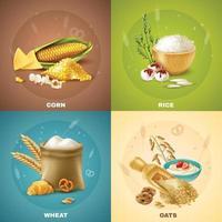 concept de design de céréales vecteur