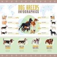infographie des races de chiens vecteur
