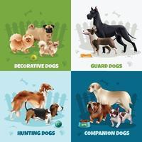 concept de design de races de chiens vecteur