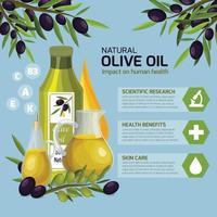 infographie de dessin animé d'olive vecteur