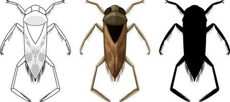 ensemble de coléoptères backswimmer en trois styles vecteur