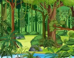 scène de jungle avec liane et nombreux arbres vecteur