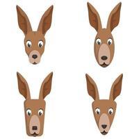 ensemble de kangourous de dessin animé. vecteur
