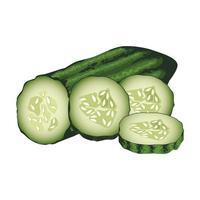 concombres frais icônes de légumes sains vecteur