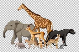 groupe d'animaux sauvages africains vecteur