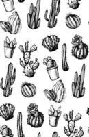 modèle sans couture de cactus isolés dessinés à la main