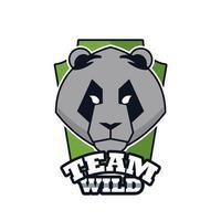 Icône d'emblème animal tête d'ours avec lettrage sauvage d'équipe vecteur